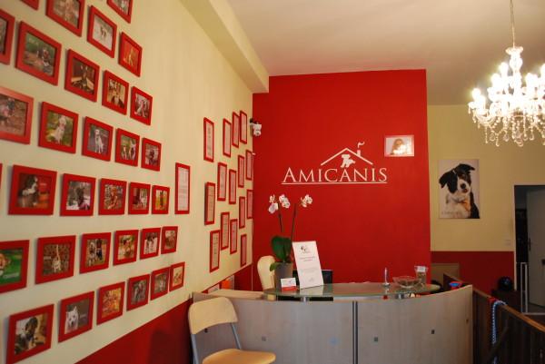 Amicanis_Rezeption_1